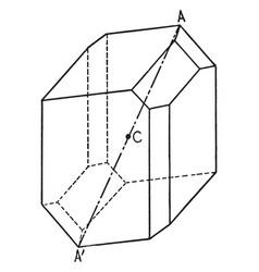 Symmetry center vintage vector