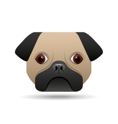 pug dog puppy face icon design vector image