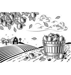 Apple harvest landscape black and white vector image