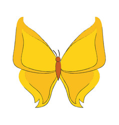 Beautiful buttefly isolated vector