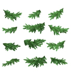 Christmas tree green branches set vector image vector image