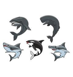 Dangerous marine predators icon set vector