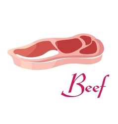 Fresh raw beef meat vector image vector image