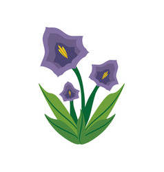 Pansy flower spring image vector