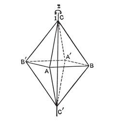 Symmetry axis vintage vector