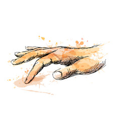 colored sketch of touching hand vector image