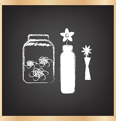 Flower on chalkboard vector