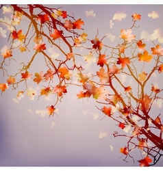 Autumn abstract floral background EPS 10 vector image vector image