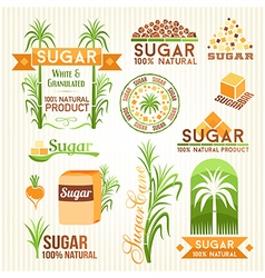 Sugar design elements vector image vector image