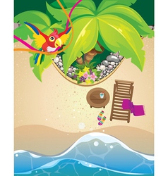 parrot and beach vector image