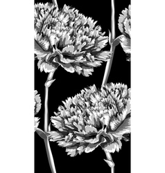 Black and white seamless background with carnation vector
