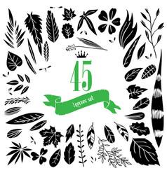 set doodle leaves vector image