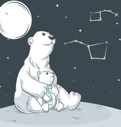 Bears in the north vector image
