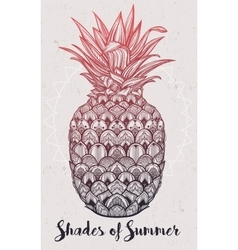 Ornate pineapple fruit vector