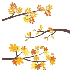 Autumn tree brunches flat border set vector