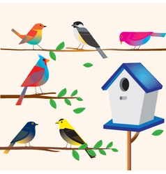 Cute bird set with the house vector