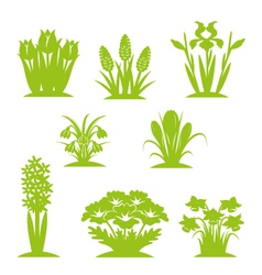 Flowers green vector