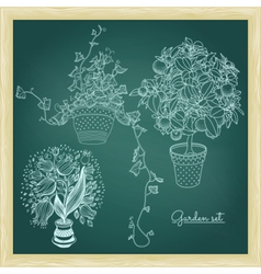 Garden set with 3 plants in flowerpot vector