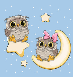 Valentine card with lovers owls on a moon and star vector