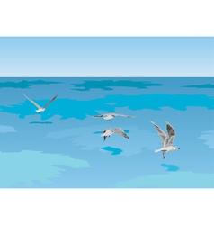 seagulls over sea vector image