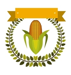 Colorful olive crown and label with corn vector