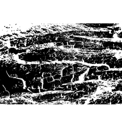 Grunge texture in black and white colors vector image