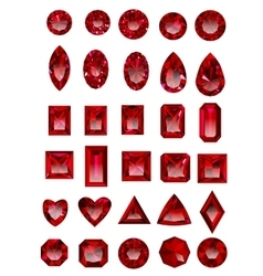 Set of realistic red rubies vector image