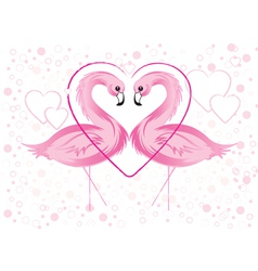 flamingos and hearts vector image