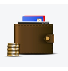 The wallet vector image vector image