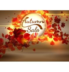 Autumn Sale background with copyspace plus EPS10 vector image vector image