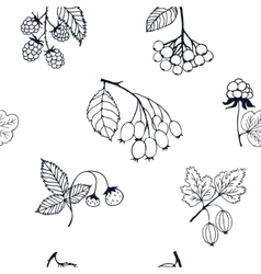 Berries sketch seamless pattern vector