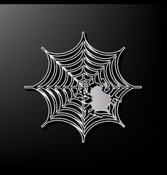 Spider on web gray 3d vector