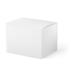 white box on white background for design vector image