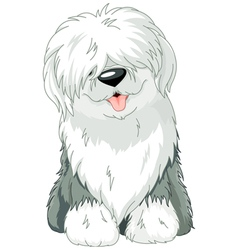 Old english sheepdog vector