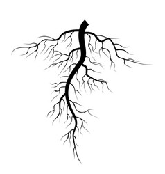tree underground roots set vector image