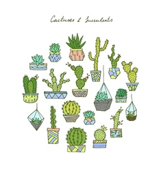 Cactuses succulents set vector image vector image