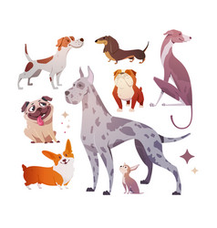 Cartoon dogs of different breeds and sizes vector