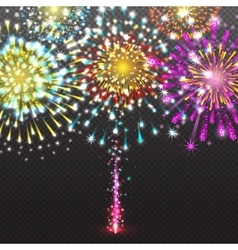 Set Festive Firework Salute Burst on Transparent vector image vector image