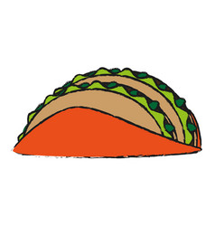 tacos food draw vector image