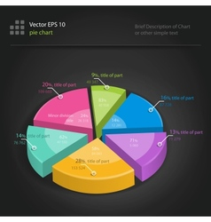 Infographics pie chart vector