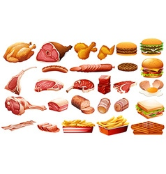 Different kind of meat and food vector image vector image