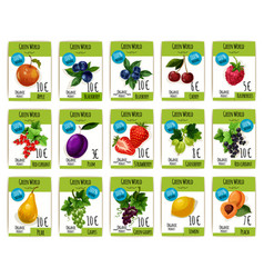 Fruit and berry price tag label product card set vector