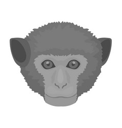 Monkey icon in monochrome style isolated on white vector