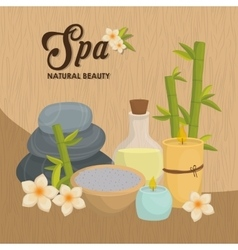Stones and decoration spa center design vector