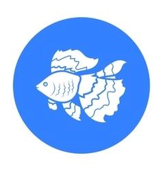 Gold fish icon black Singe aquarium fish icon vector image