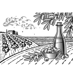 Olive harvest landscape black and white vector