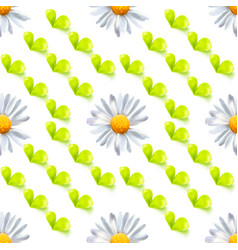 seamless pattern with leaves and chamomile vector image vector image