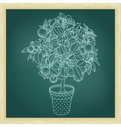 Drawing of a small citrus tangerine orange tree vector