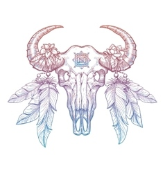 Colorful buffalo skull vector