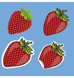 Different types of strawberries isolated on blue b vector